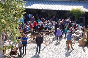 GEO_HP_Veranstaltung_Kelterfest_klein_03