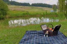 Picknick am Weiher