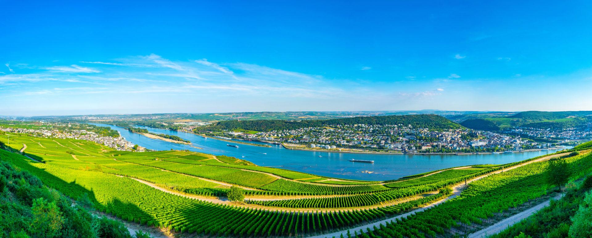Die Kulturlandschaft Rheingau nahe des Hofgut Georgenthal